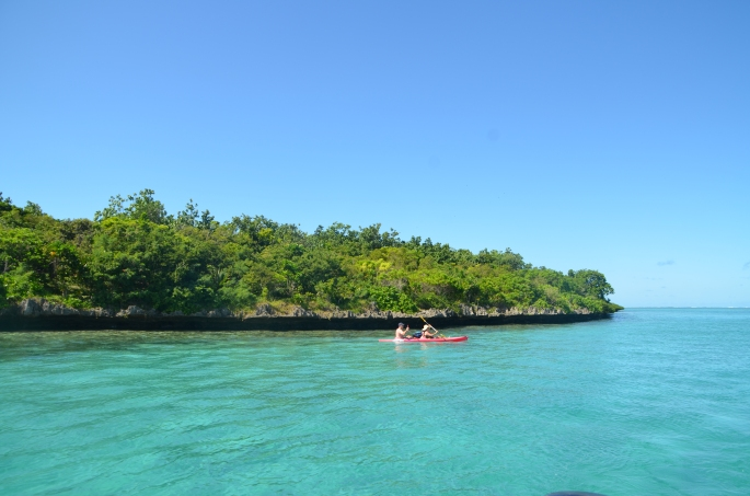Ile aux aigrettes , Ile Maurice - Mauritius