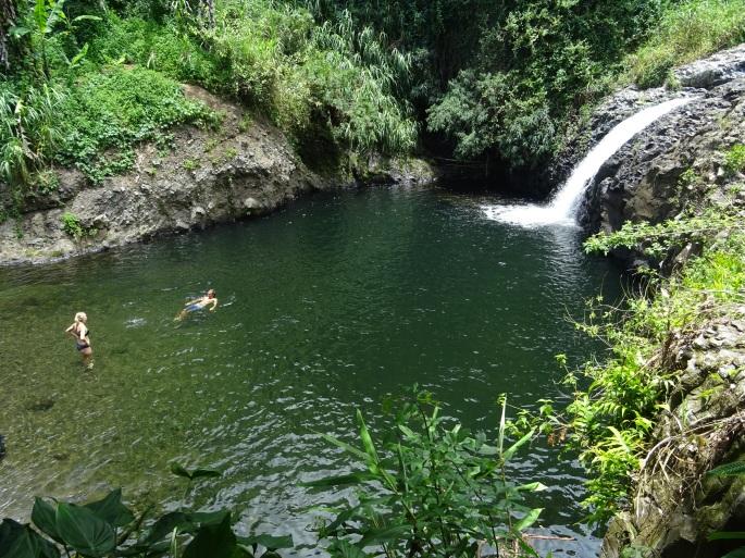 Cascade Délices, Sainte-Suzanne, Ile de la Réunion