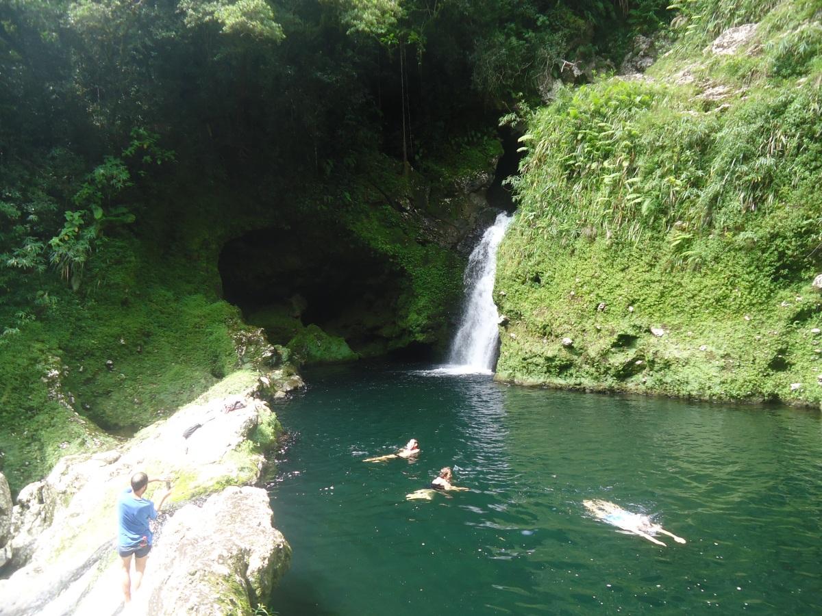 Bassin Jacob, ile de la Réunion