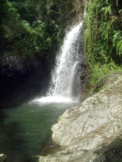 Bassin des doeux soeurs , Espérance les bas Sainte-marie Ile de la Réunion Randonnée