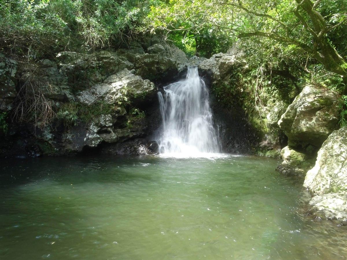 Bassin Frank , Espérance les bas Sainte-marie Ile de la Réunion Randonnée