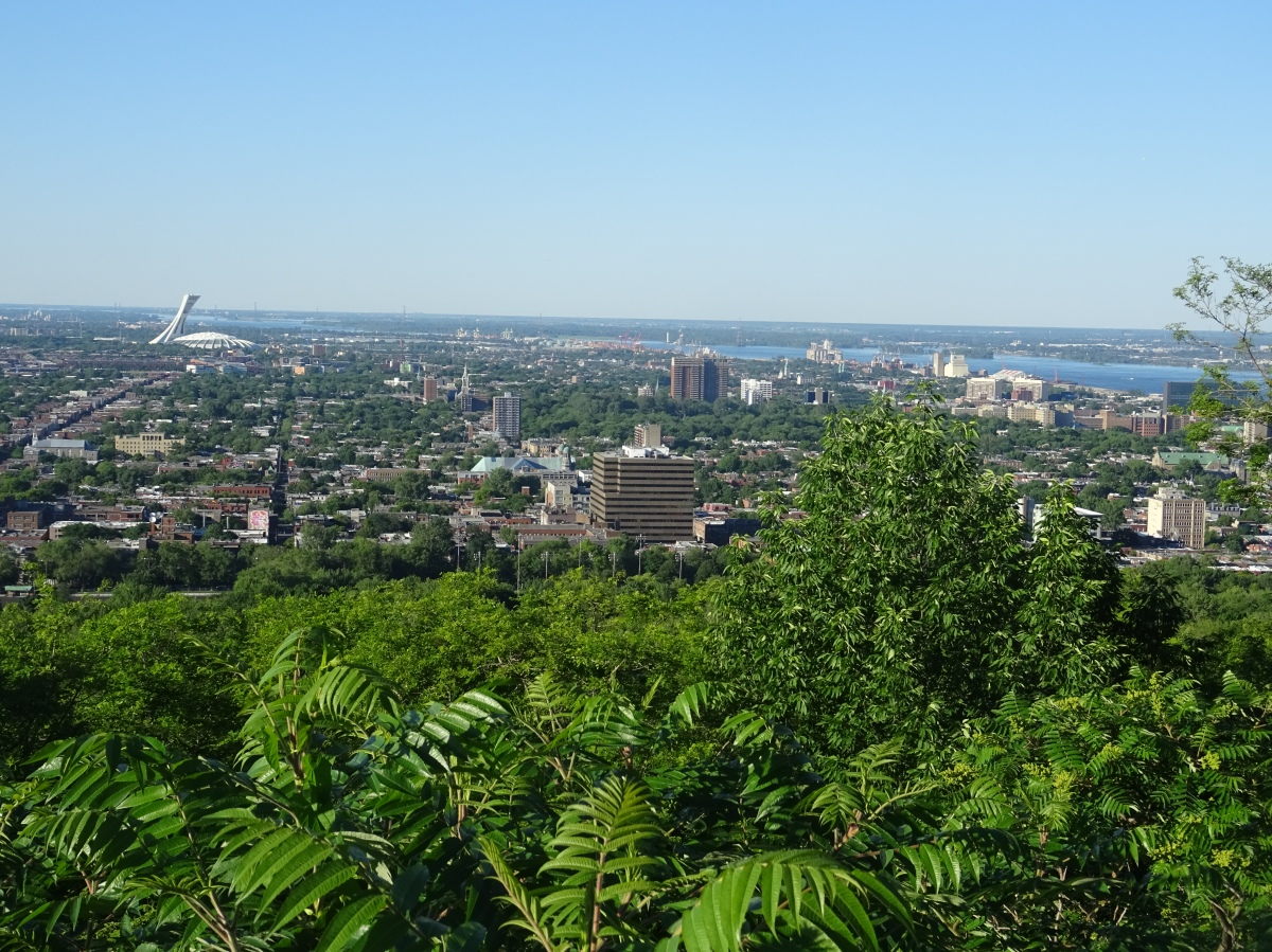 Mont royal Canada
