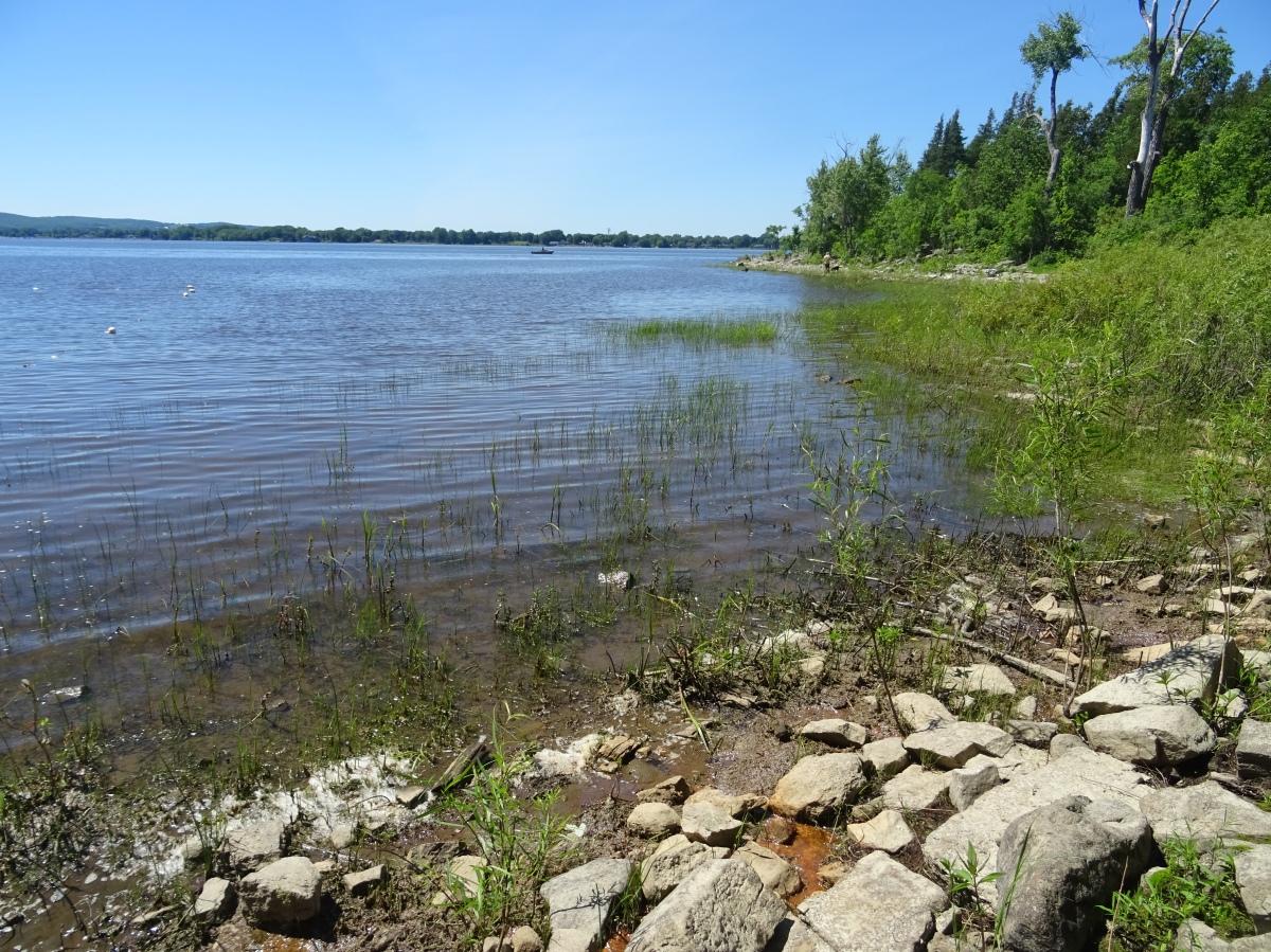 Plage de l'île Bizard Montréal Canada