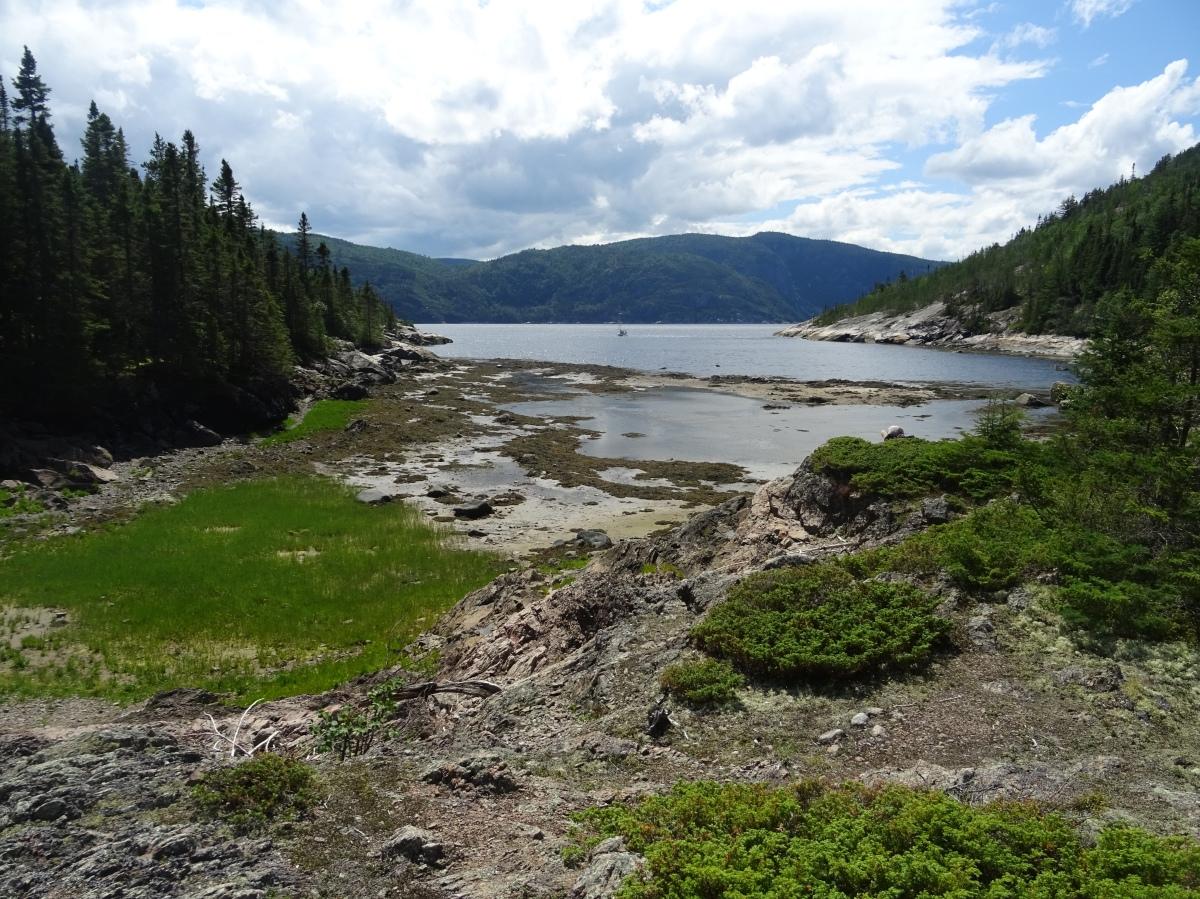 Anse à la barque point de vue parc national du fjord de saguenay tadoussac québec canada randonnée à voir à faire activité voyage