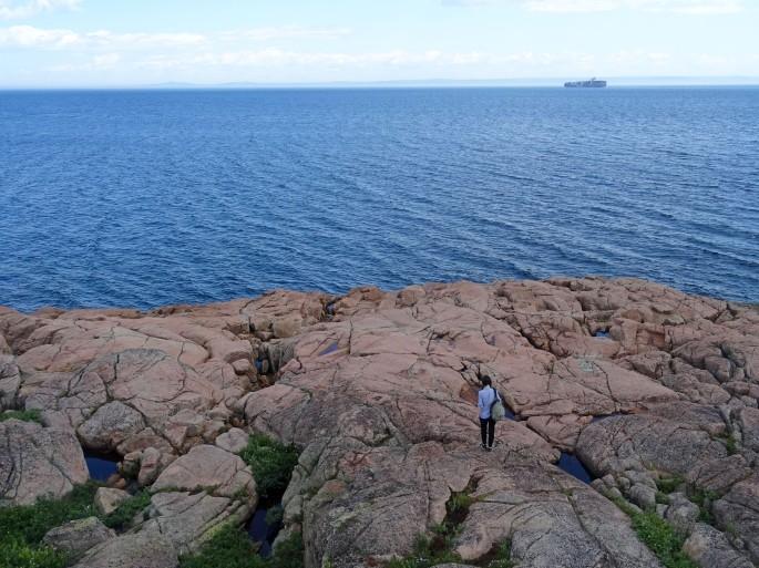 Les Escoumins observation des baleines Québec Canada