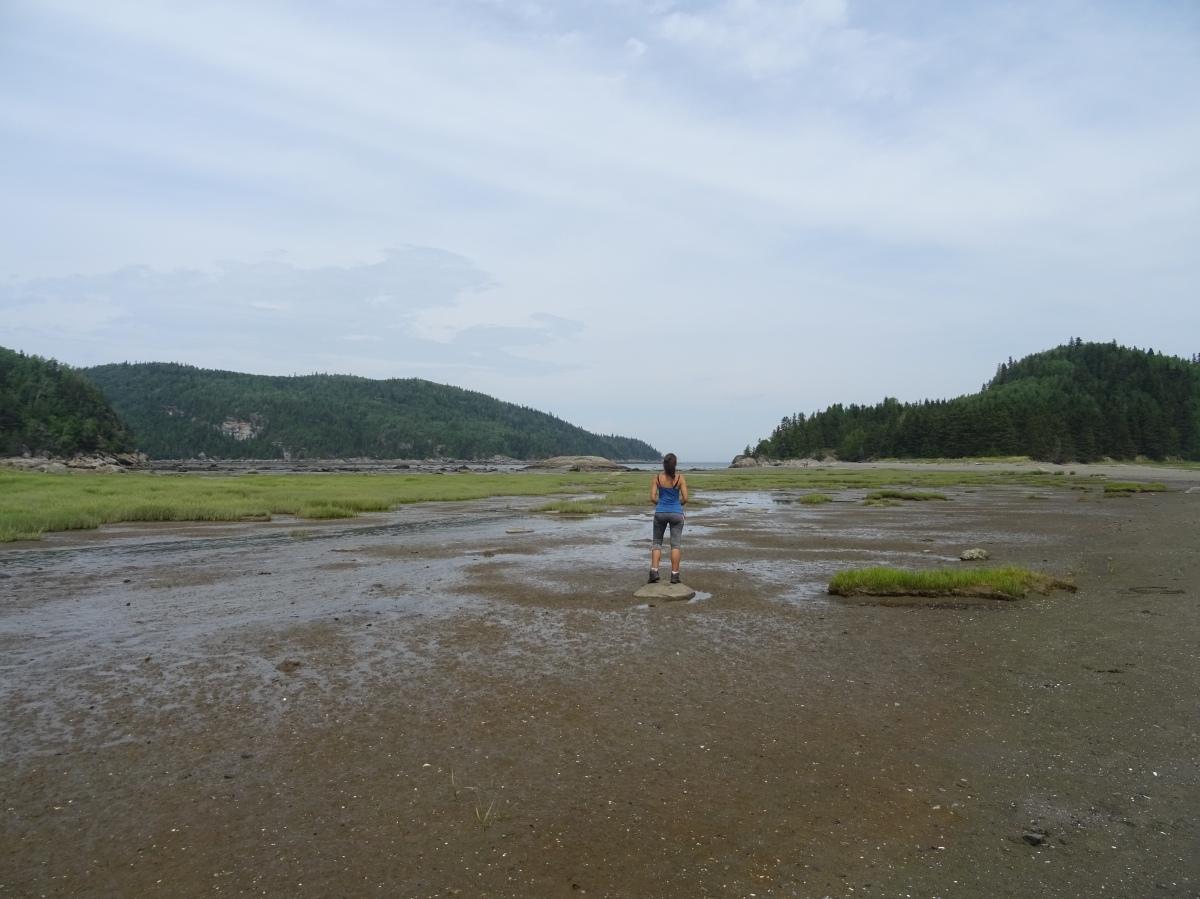Road trip Québec Gaspésie Canada Rimouski Parc national du Bic ile aux amours