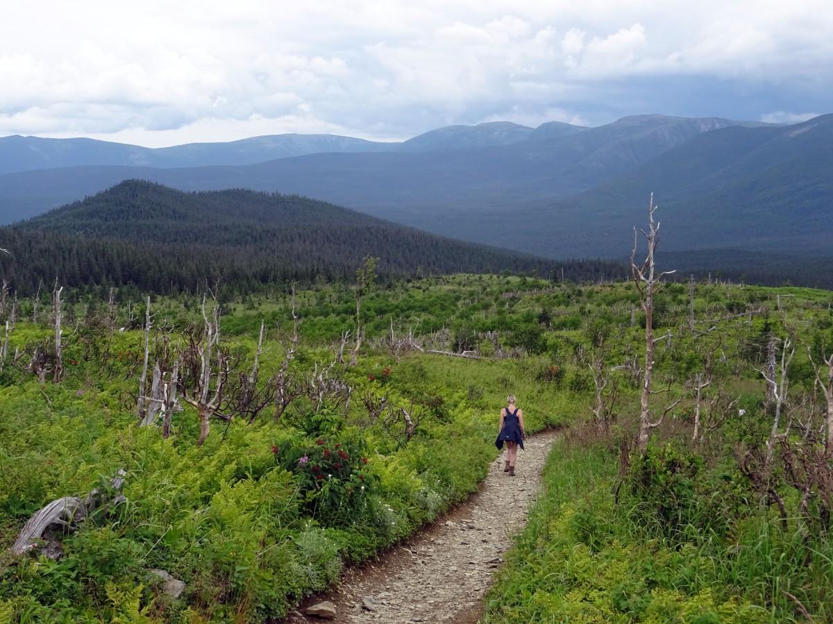 Road trip Québec Gaspésie Canada Parc national de la Gaspésie Mont Ernest-Laforce randonnée