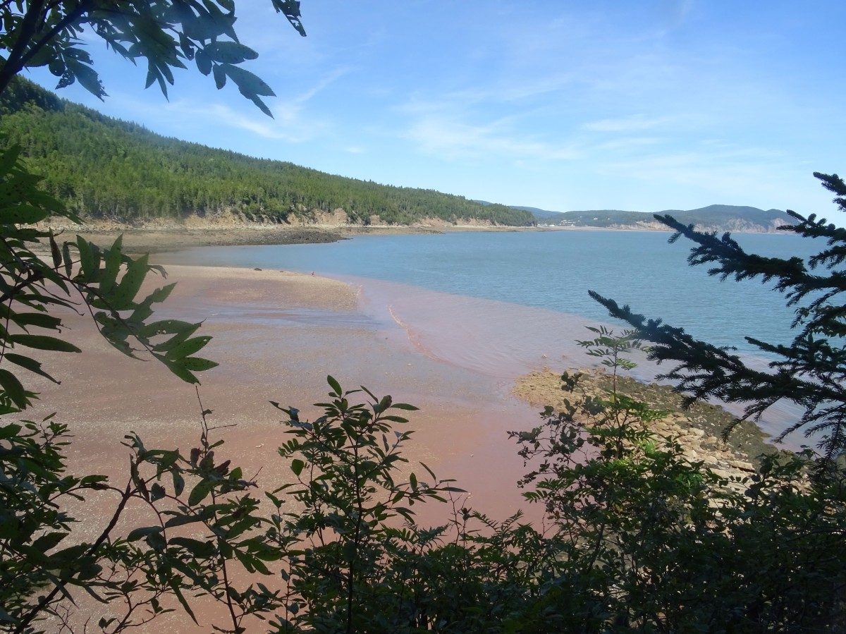 Plage Nouveau brunswick herring cove parc national fundy canada