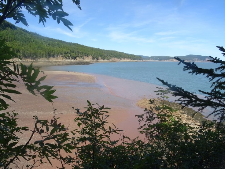 Plage Nouveau brunswick herring cove parc national fundy canada
