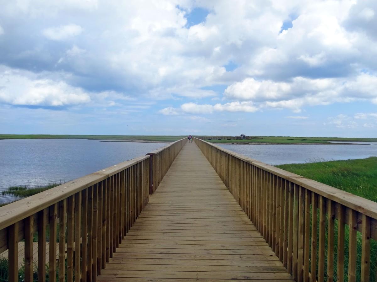 Parc national de kouchibouguac Plage kellys Nouveau brunswick canada