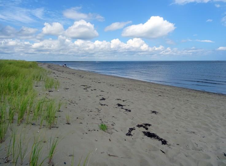 plage canada nouveau brunswick parc national kouchibouguac