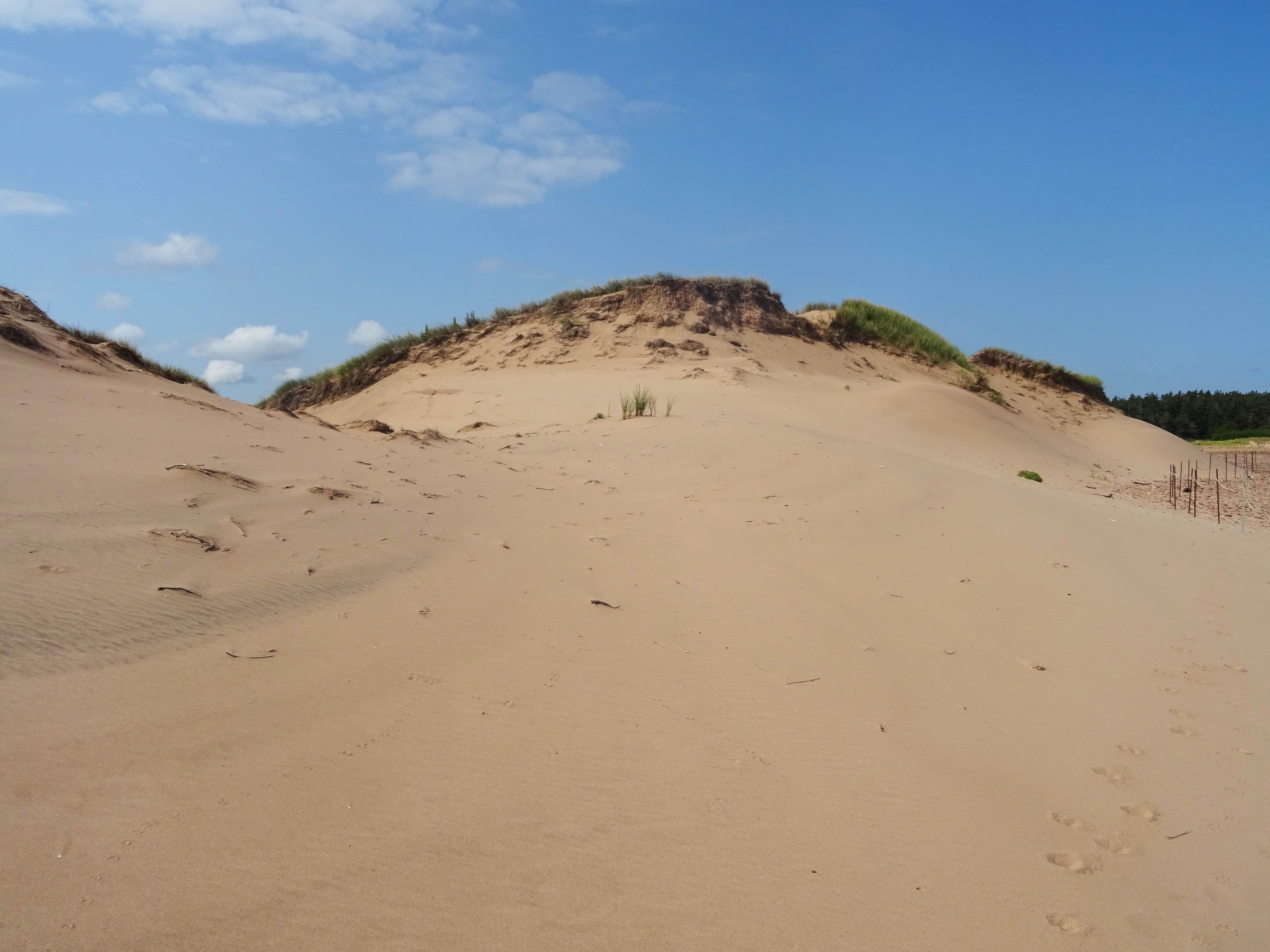Cavendish Dunes Ile du prince edouard plage canada
