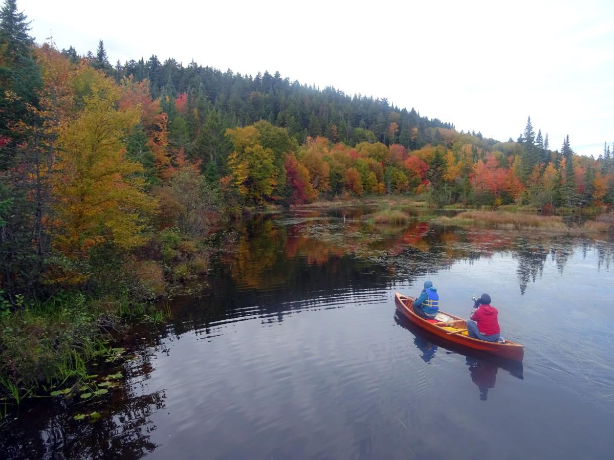 Randonne facile d'automne à proximité de Québec city pour voir les couleurs : réserve naturelle des marais du nord Canada