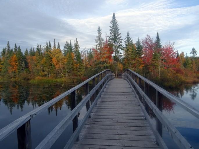 Randonnée facile d'automne à proximité de Québec city : Réserve naturelle des marais du Nord, Canada
