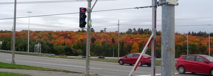 Paysage d'automne au Québec vue depuis la route