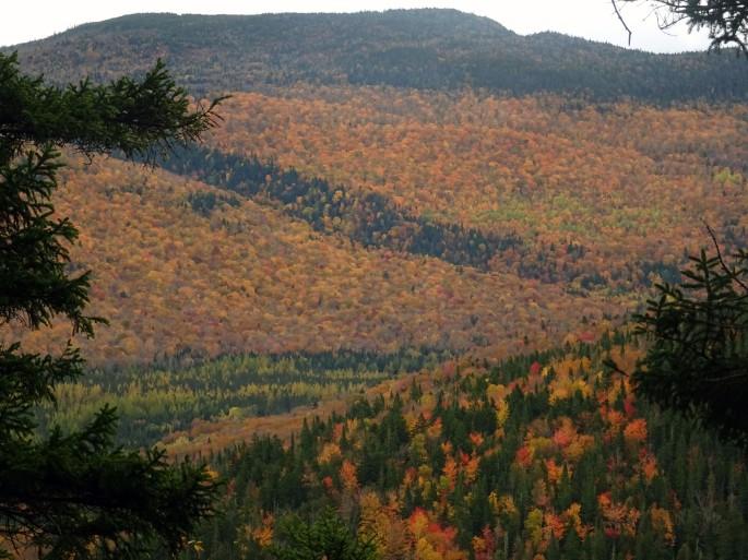 Activité d'automne au Québec : où voir les couleurs ? Vallée Bras du Nord, Canada