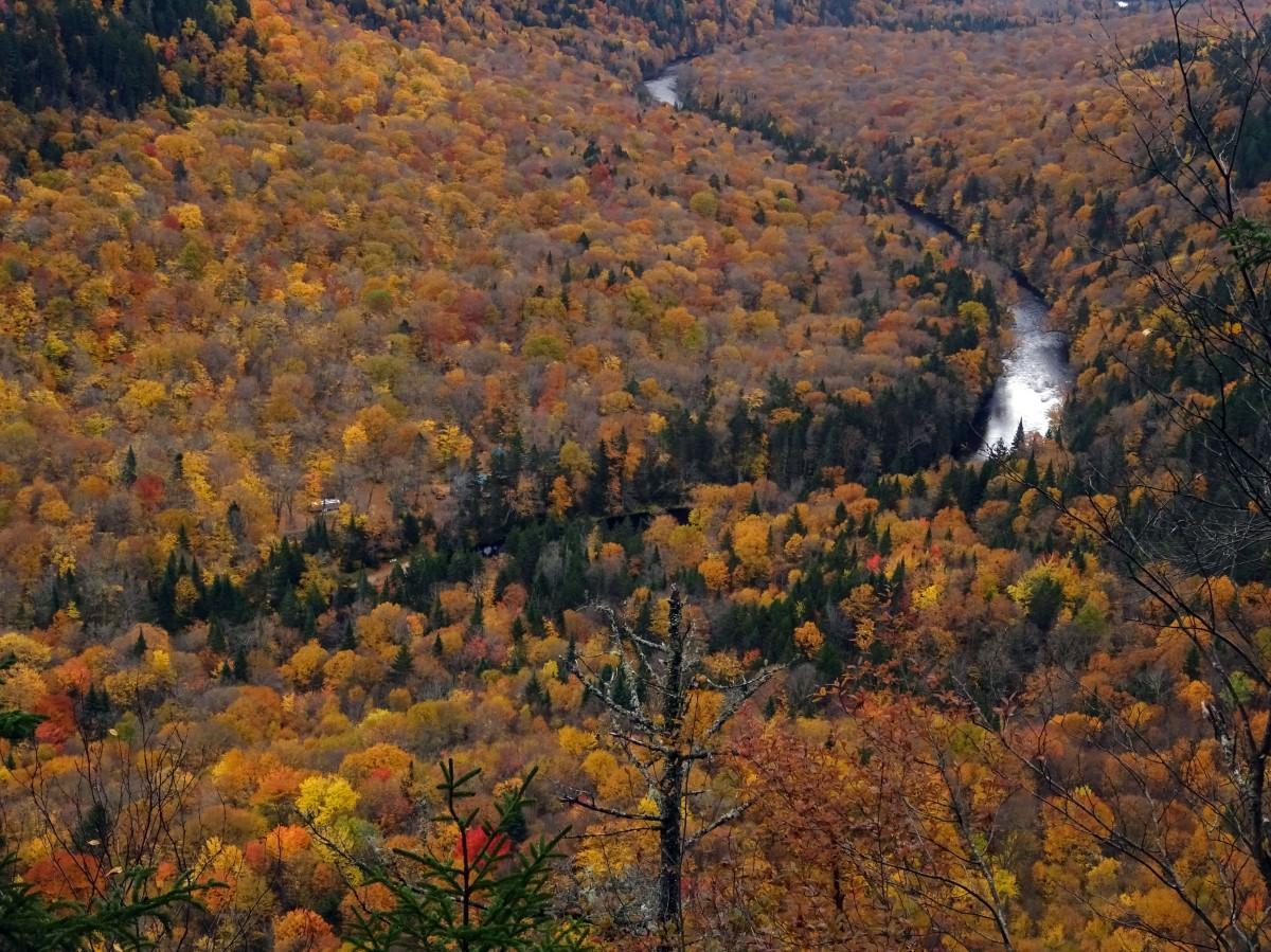 Paysage d'automne au Québec : Randonnée Vallée Bras du Nord, Canada