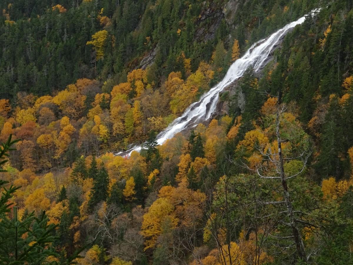 Paysage d'automne au Québec, Canada : Chute delaney