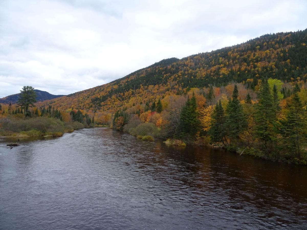 Activité automne québec : randonnée vallée bras du nord, accès shannahan