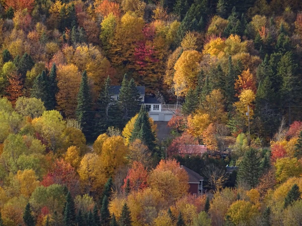 où voir les couleurs d'automne à proximité de Québec city ? Randonnée au Mont Wright, Canada