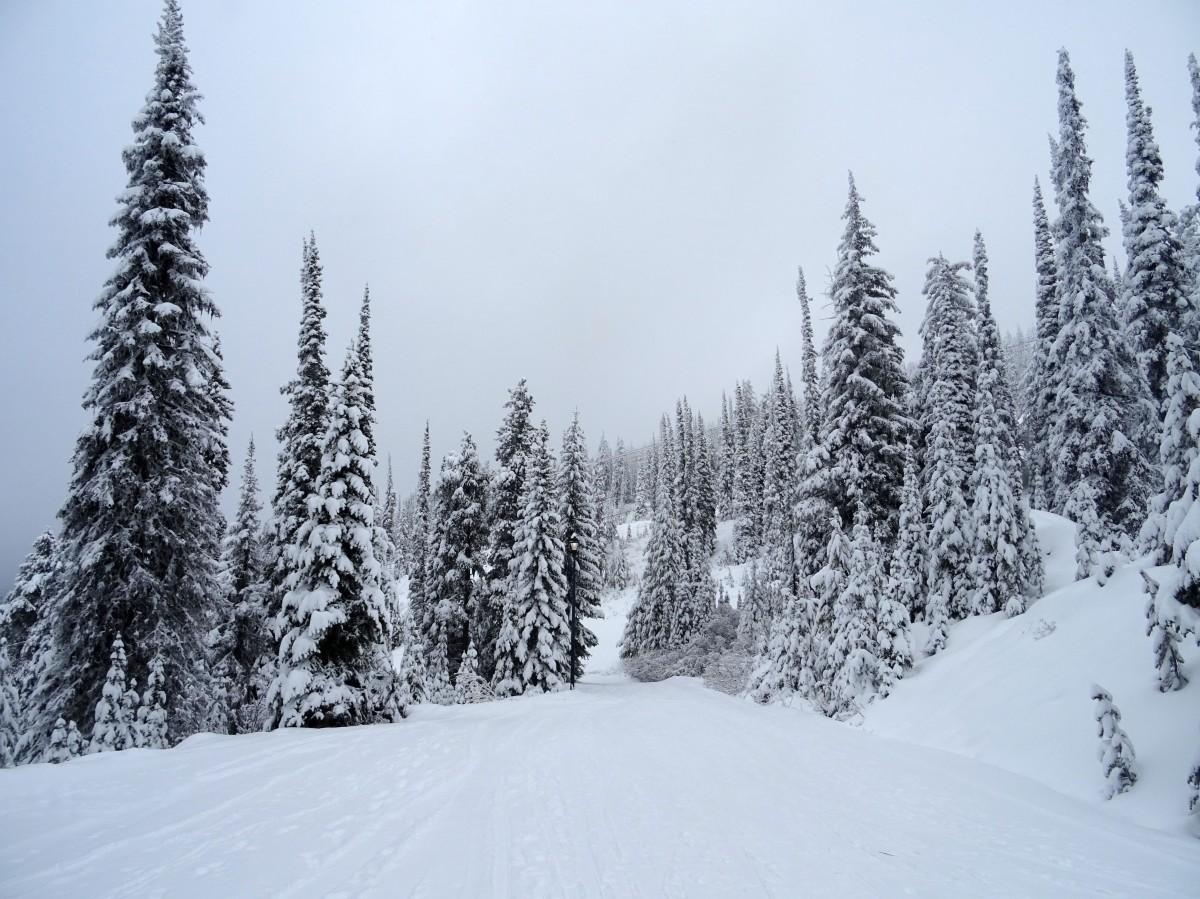 PVT Canada, travail saisonnier en station de Ski, Big White, Colombie Britannique