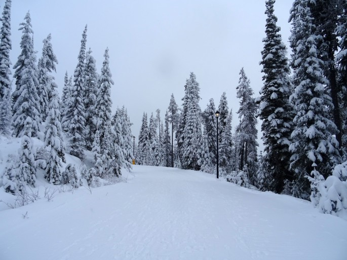 Retour d'expérience PVT Canada, emploi saisonnier en station de ski, Big White Ski Resort, Colombie Britannique