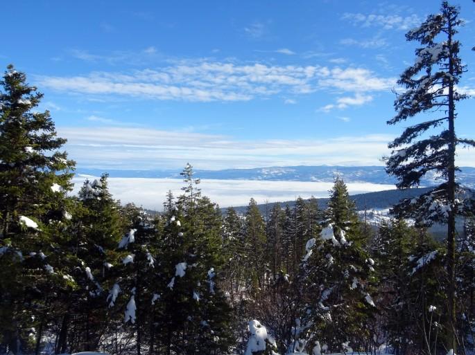 Randonnée raquette Kelowna Telemark panorama ridge trail Okanagan valley Canada hiver