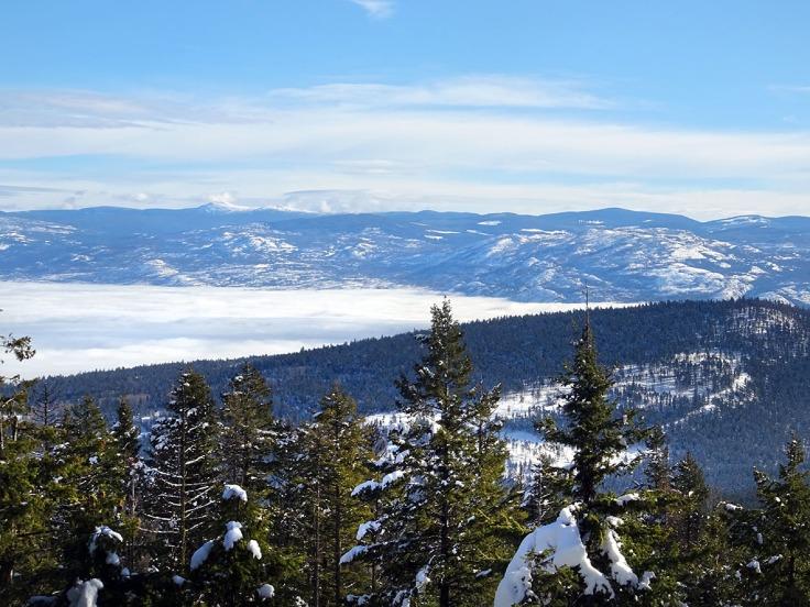 Randonnée raquette au Canada en hiver : Telemark, panoramic ridge trail, Kelowna, Okanagan valley