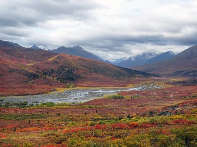 Automne au parc territorial de Tombston, Territoire du Yukon, Dempster Highway