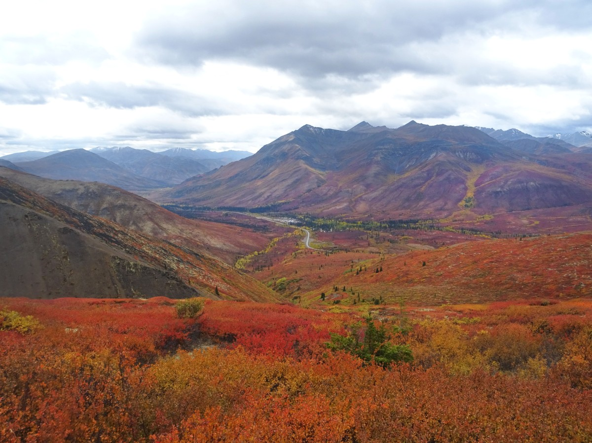 Randonnée automne parc de Tombstone, Yukon Territory, Dempster Highway