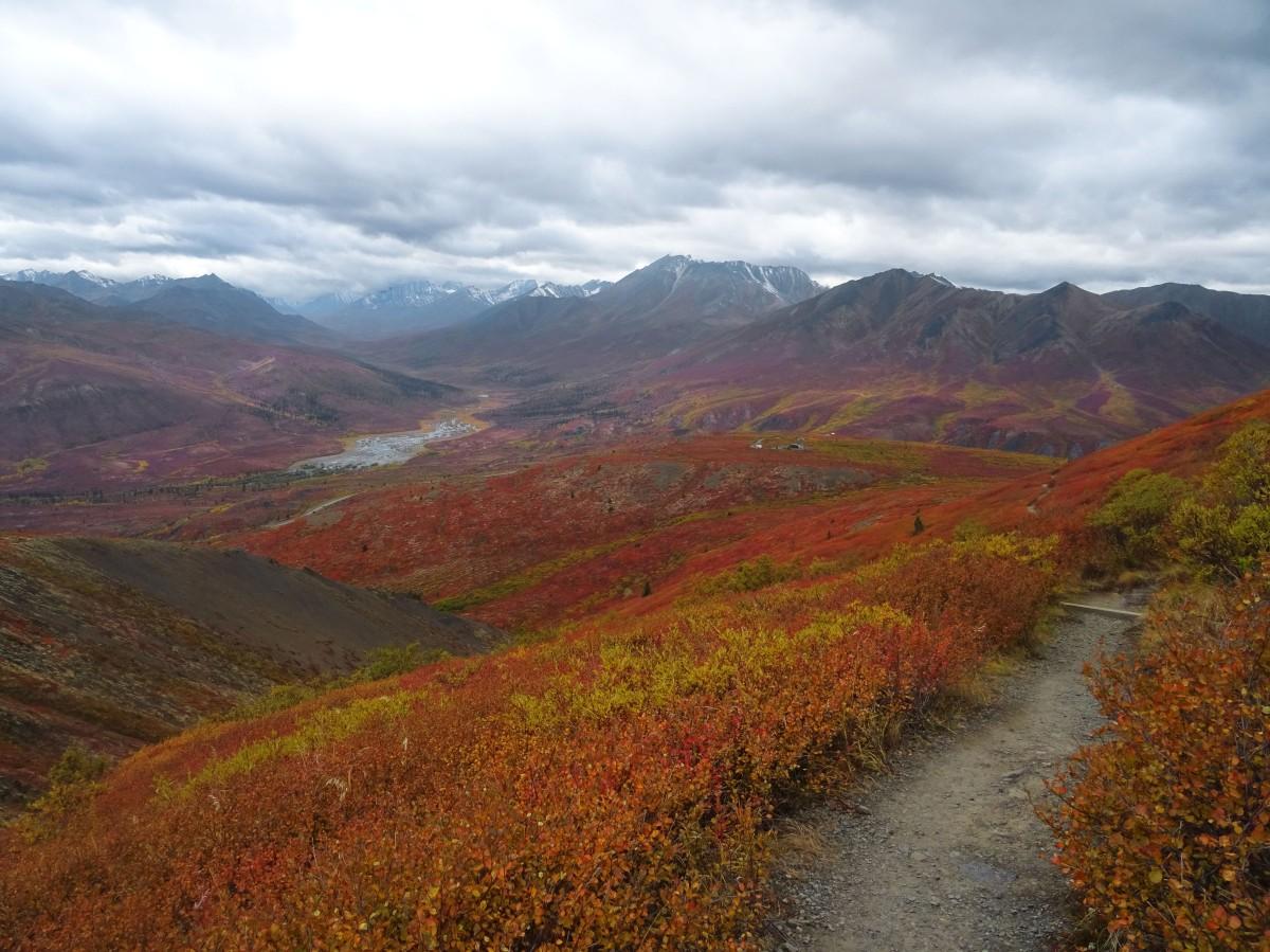 Randonnée automne parc territorial de Tombstone, Yukon, Dempster Highway