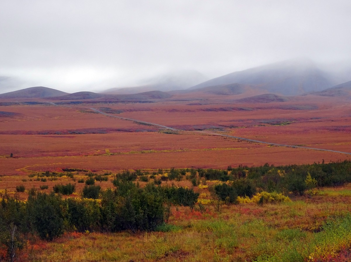 L'automne au Yukon, Dempster Highway