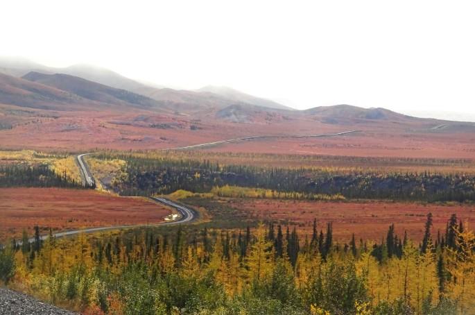 Automne sur la Dempster Highway, Yukon, Canada