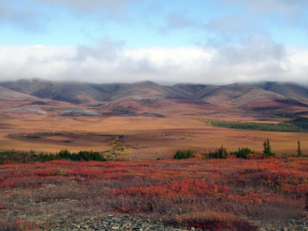 Cercle arctique, Dempster Highway, Yukon en automne
