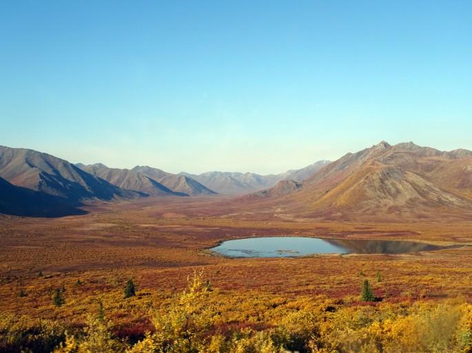 L'automne au parc de Tombstone, Dempster Highway, Yukon, Canada