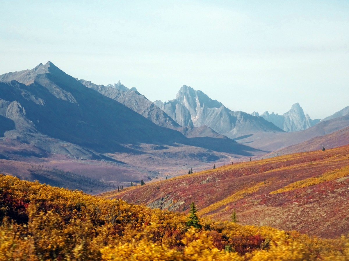 Automne Tombstone Territorial Park, Dempster Highway, Yukon