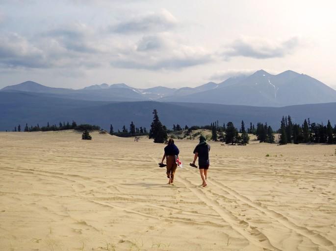 Désert de Carcross, Yukon, Canada