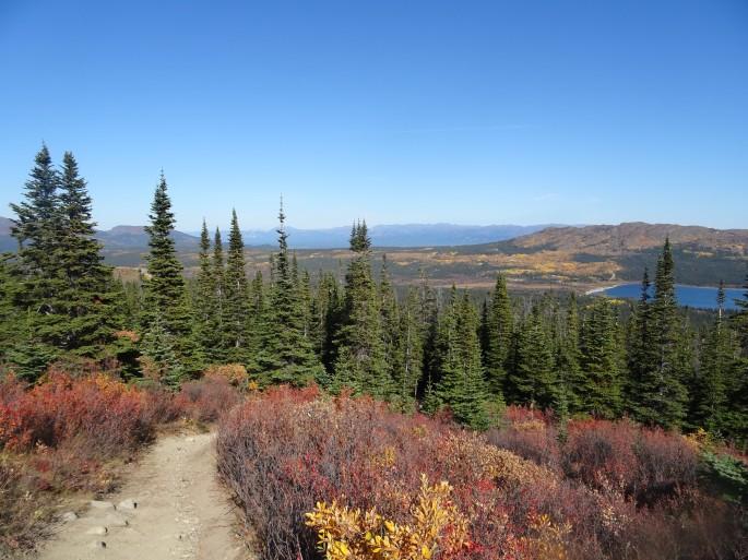Randonnée facile à Whitehorse : Fish lake, Yukon, Canada