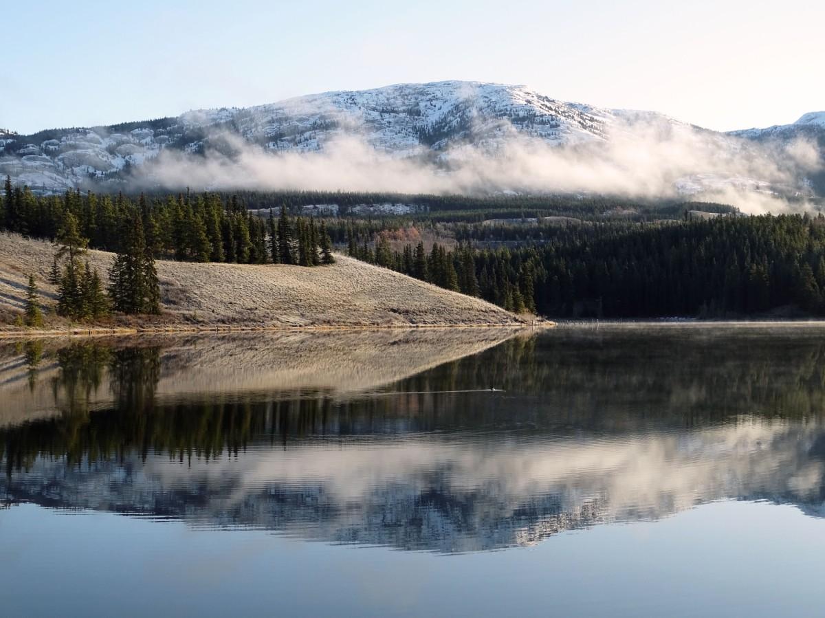 Randonnée facile Whitehorse Hidden lake
