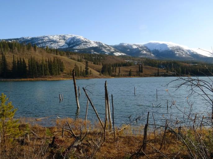 Randonnée facile Whitehorse Hidden lake Yukon Canada