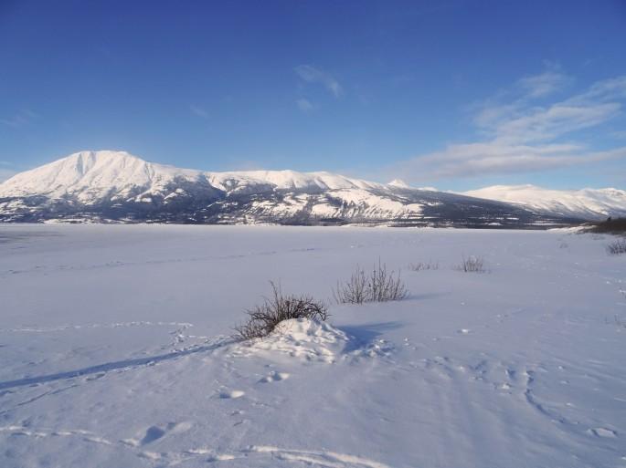 Le Yukon en hiver : Plage de Carcross, Canada