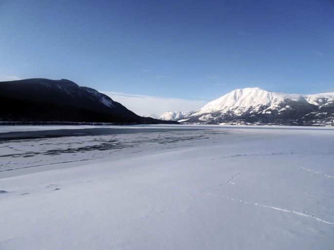 Plage de Carcross en hiver, Yukon, Canada