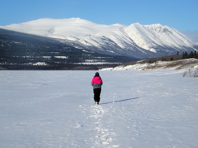 La plage de Carcross en hiver, Yukon, Canada