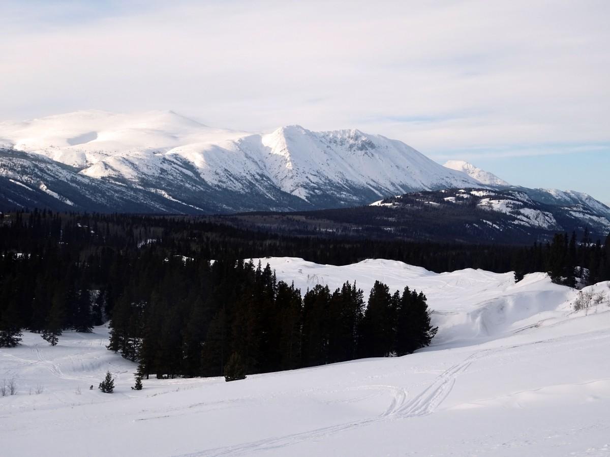 Le Désert de Carcross en hiver, Yukon, Canada