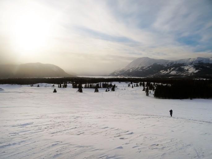 Vue sur Carcross depuis le désert, Yukon, Canada