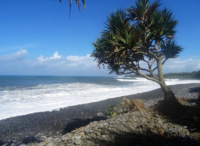 Sentier littoral Est, Saint-Benoit, Ile de la Réunion