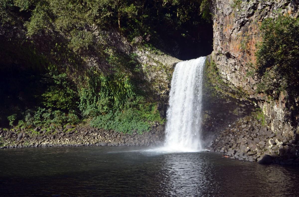 Bassin la Paix, Saint-Benoit, Ile de la Réunion