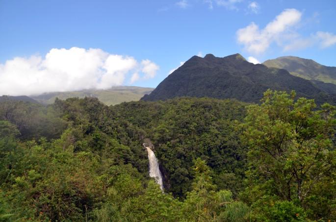 La Cascade du chien, Bras-Panon, Ile de la Réunion