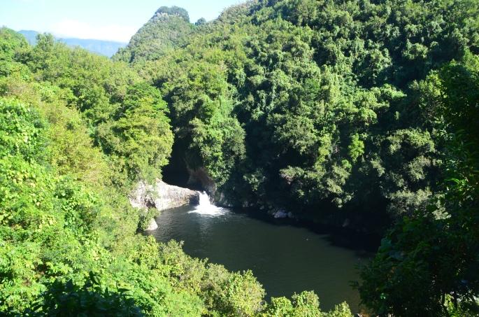 Randonnée facile à Saint-Benoit, Ile de la Réunion, Bassin la Mer Bassin la Paix
