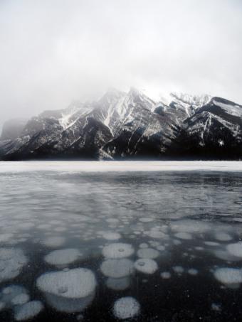 Bulles de méthane au lac Minnewanka, Parc national de Banff, Alberta